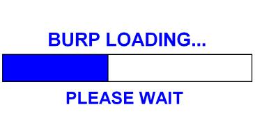 BURP LOADING...
