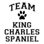 Team Cavalier King Charles Spaniel