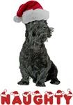 Naughty Scottish Terrier