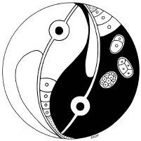 C. elegans Yin Yang