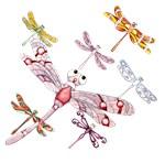 Wild Dragonflies