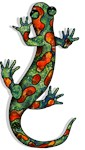 Wild Salamander