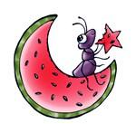 Watermelon Ant