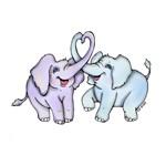 Elephant Baby Twins