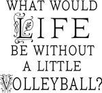 Life Without Volleyball Quote Gift T-shirts