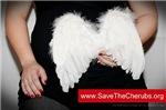 Save the Cherubs - Douglas Collins 03