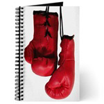 ...Boxing Gloves 3...