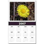 ...Wild Flower 03...