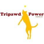 Tripawd Power (Caira Sue)