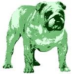 Green Bulldog