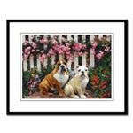 Bulldog Prints and Posters
