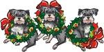 Schnauzers in Wreaths