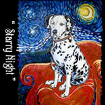 Dalmatian Starry Night