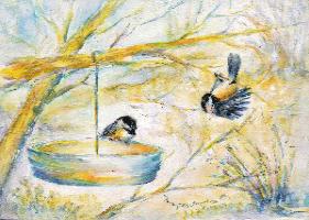 """Where's the Seed?"" Chickadee Pair"