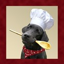 Black Labrador Chef