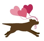 Chocolate Labs Steal Hearts