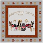 SERVICE DOGS