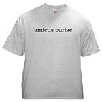 Amicus Curiae