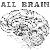 All Brains