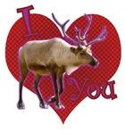 I [caribou] You!