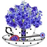 Birth Flower and Gem July