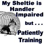 Sheltie Agility