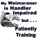 Weimaraner Agility
