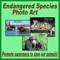 Endangered Species Photos