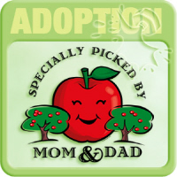 Adoption T-shirts & Gifts
