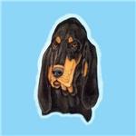 Black & Tan Coonhound Head Study