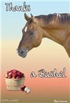 Equine Thank You Cards