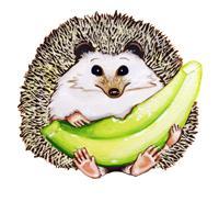 Honeydew Hedgehog