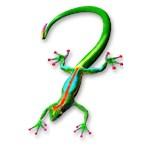 Gecko Lizard Rainbow Colors