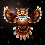 Owl Surreal 3d Art
