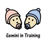 Gemini in Training