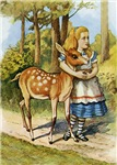 ALICE & THE DOE, A DEER