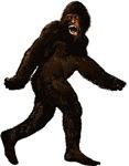 Bigfoot Yetti Sasquatch
