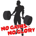 No Gains No Glory