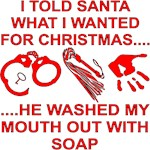 I Told Santa What I Wanted He Washed My Mouth Out