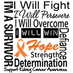 Kidney Cancer Persevere Shirts