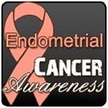 Endometrial Cancer Shirts