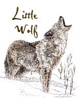 Little Wolf 2