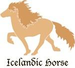 Dun Icelandic horse