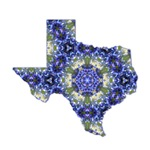 Texas Blue Mosaics