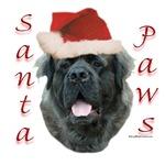 Santa Paws Fluffy