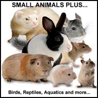 Other ANIMALS & PETS