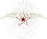 Vintage Flying Star Design