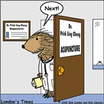 Porcupine Acupuncture