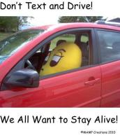 Don't Text and Drive! We All Want to Stay Alive!