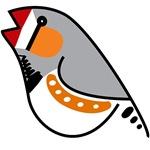 Fun Zebra Finch
